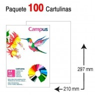 Cartulina Campus University A4 blanca